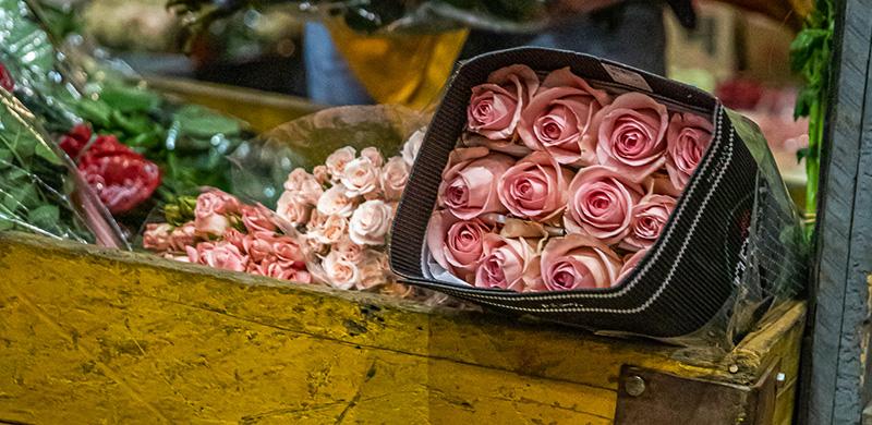 Dicas para comprar flores na CEAGESP