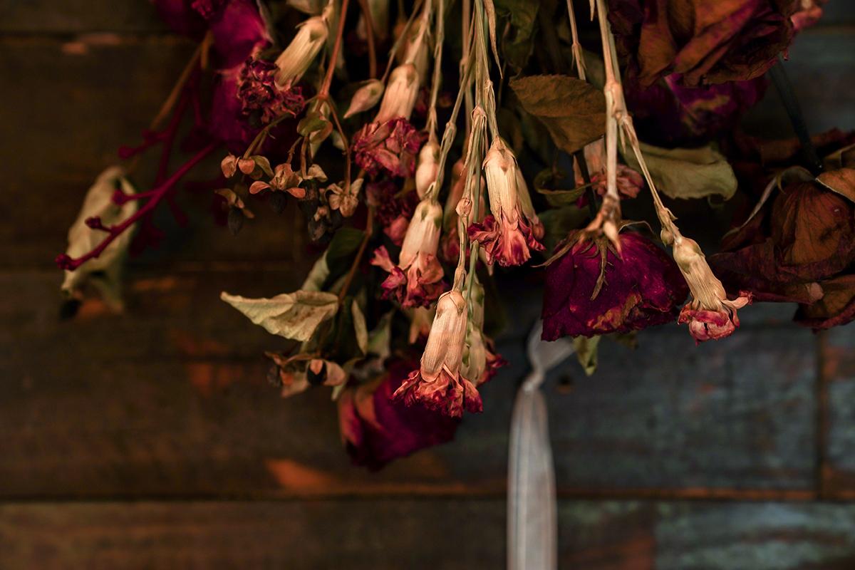 Descubra como fazer flores e folhas secas